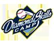 Diamond Skills Camp